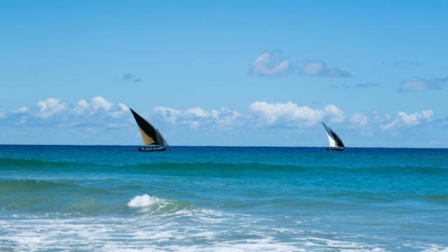 Eclectic Ocean Shot